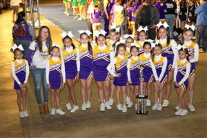 Clubs Amp Organizations Vikings Cheer
