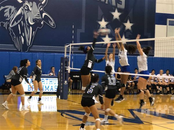 Lady Bobcats Volleyball Defeat MacArthur